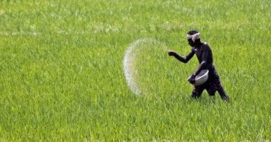 सरकार ने किसानो को दी राहत, चुकाएगी ५ % ब्याज