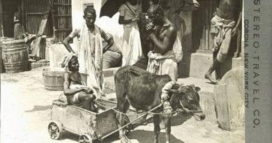 कलकत्ता में एक गरीब अपंग की बैल गाड़ी और उसके आस-पास खड़े पुरुष