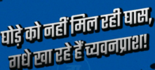 Famous Kanpur Slangs in Hindi