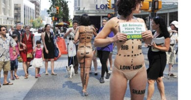 what is peta People for the Ethical Treatment of Enimals